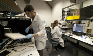 Fraunhofer CSE researchers at work in the Center's failure analysis lab.